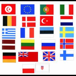 Gæsteflag 45 x 30 cm. - 2