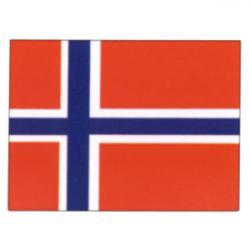 Norsk nationalflag - 1